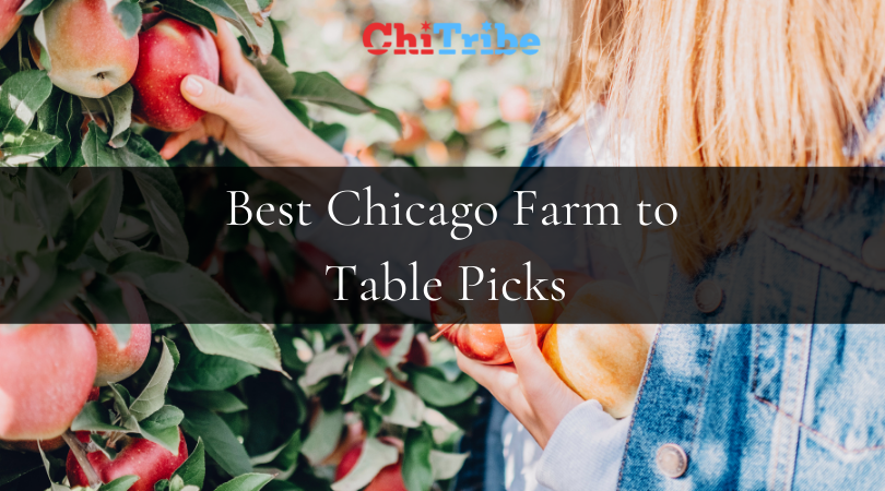 Chicago Farm to Table Picks for the New Year