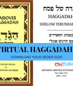 https://chitribe.org/2020/04/08/virtualhagaddahs/