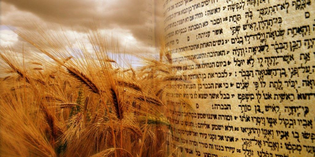 base shavuot chitribe