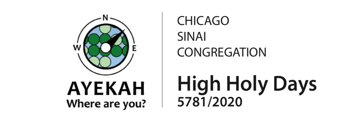 chicago sinai congregation high holy days 5781