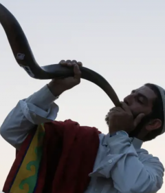 shofar chicago chitribe