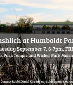 Tashlich at Humboldt Park wicker park moishe house oark park temple